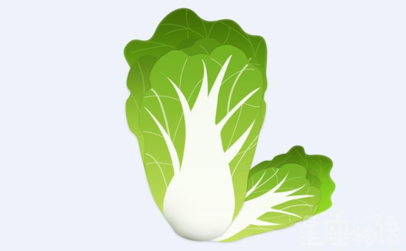 梦见白菜是什么意思 梦见白菜代表什么 梦见白菜是好事吗
