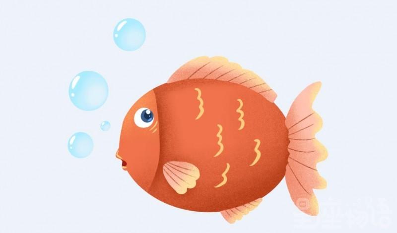 梦见杀鱼是什么意思 梦见自己杀鱼代表什么 梦见别人杀鱼是好事吗